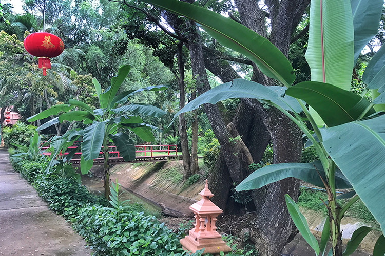 Stress Relief Retreat in Chiang Mai - Thailand - MissAbroad