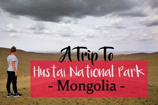 Hustai National Park Mongolia